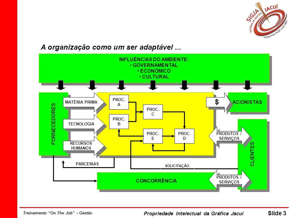 A organização como um ser adaptável ...