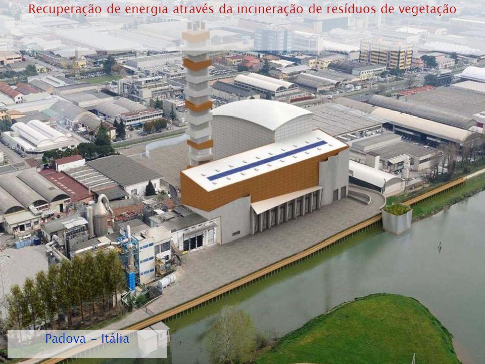Recuperação de energia através da incineração de resíduos de vegetação