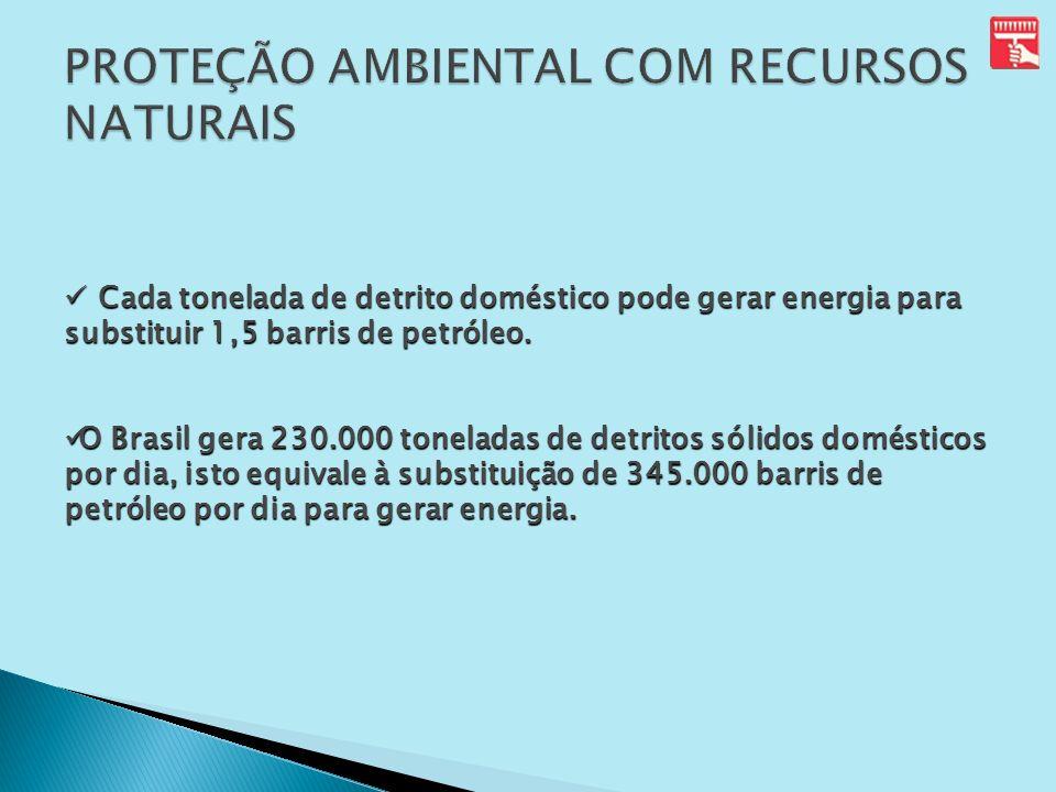 PROTEÇÃO AMBIENTAL COM RECURSOS NATURAIS