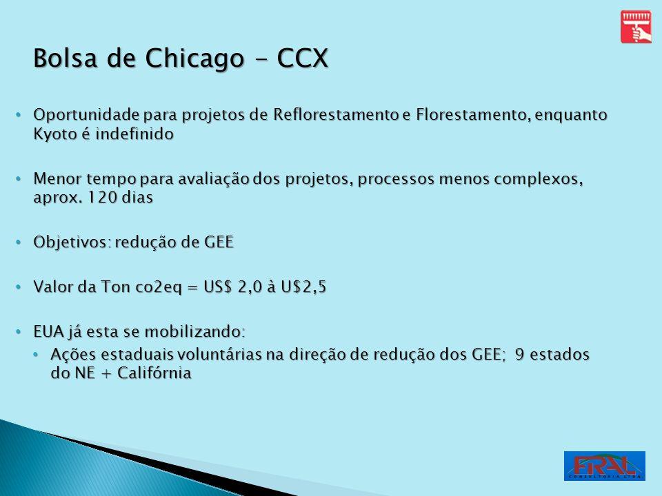 Bolsa de Chicago - CCX Oportunidade para projetos de Reflorestamento e Florestamento, enquanto Kyoto é indefinido.