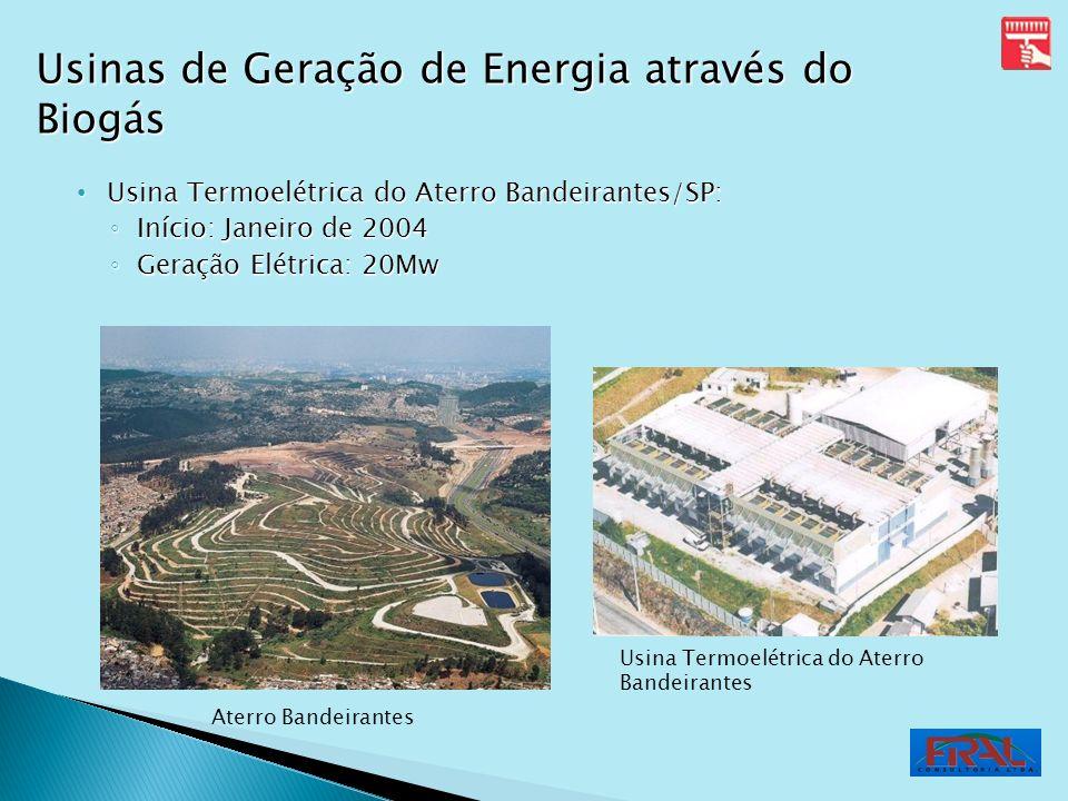 Usinas de Geração de Energia através do Biogás