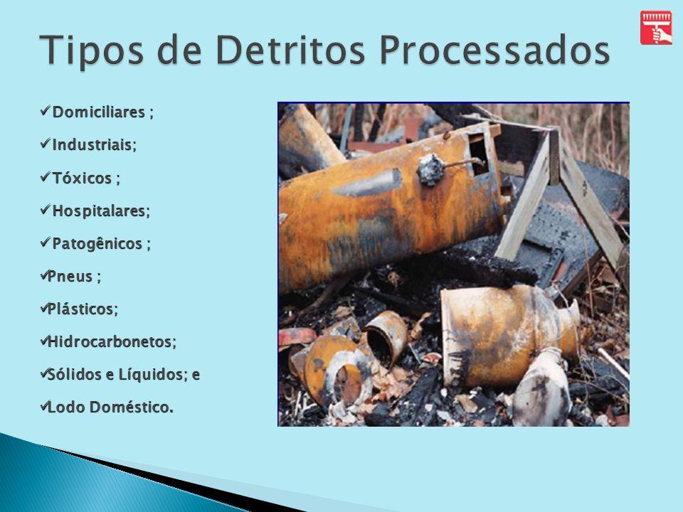 Tipos de Detritos Processados