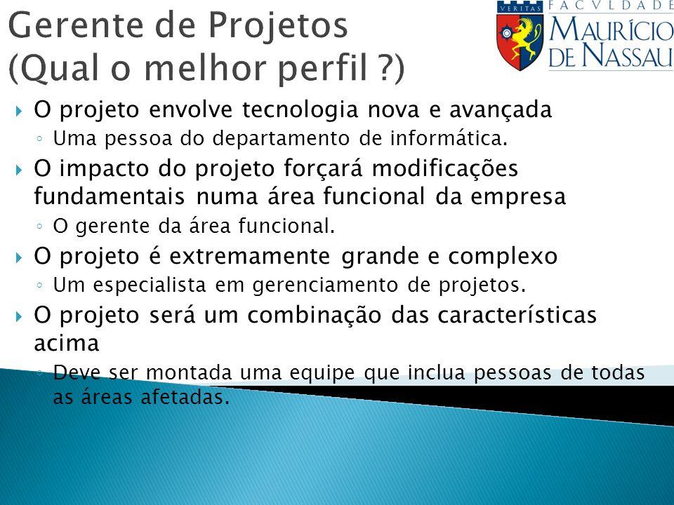 Gerente de Projetos (Qual o melhor perfil )