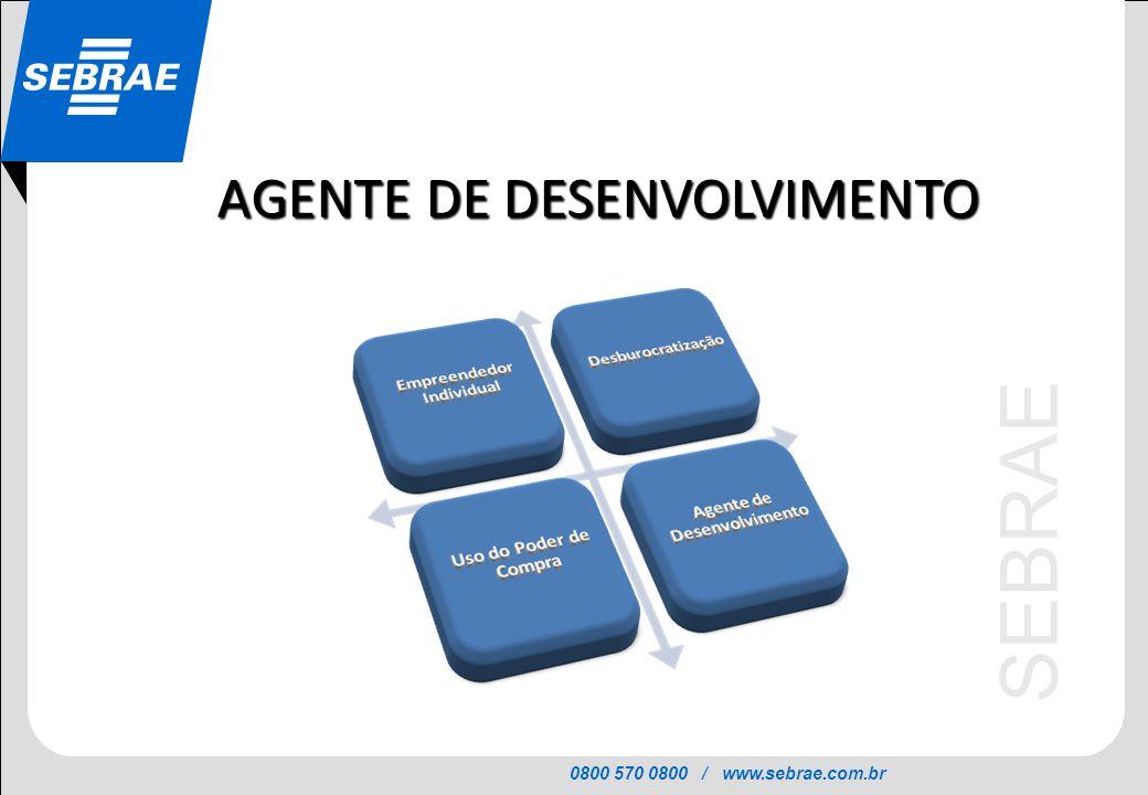 AGENTE DE DESENVOLVIMENTO