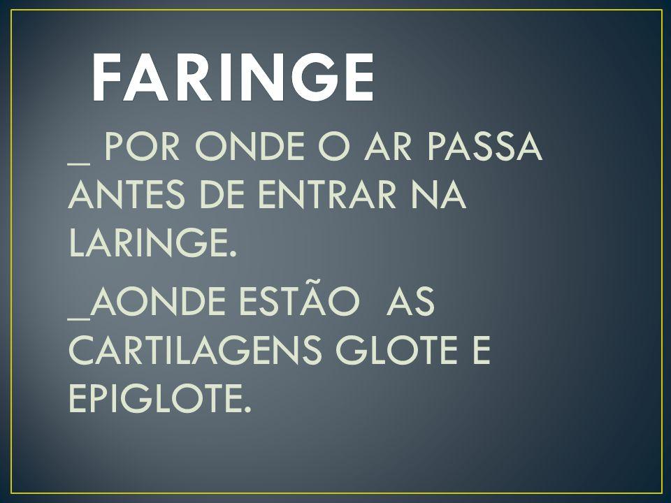 FARINGE _ POR ONDE O AR PASSA ANTES DE ENTRAR NA LARINGE.