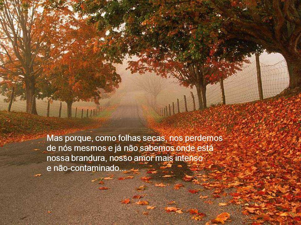 Mas porque, como folhas secas, nos perdemos de nós mesmos e já não sabemos onde está nossa brandura, nosso amor mais intenso e não-contaminado...