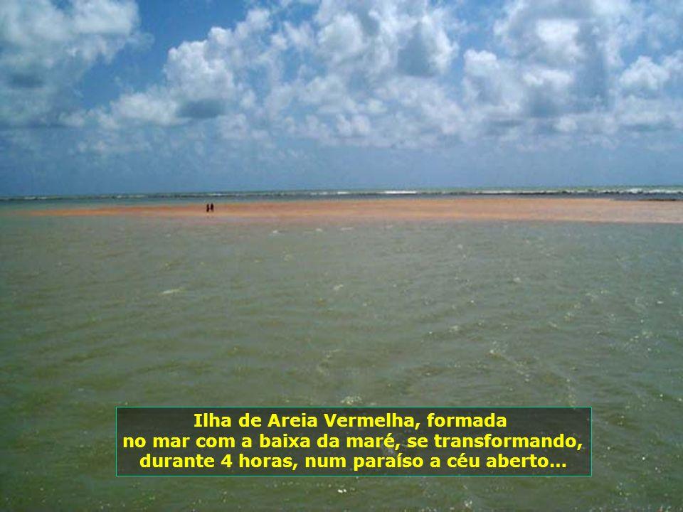 Ilha de Areia Vermelha, formada