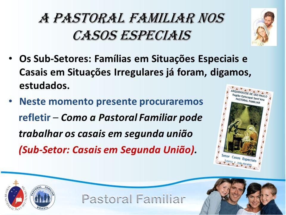 A Pastoral Familiar nos Casos Especiais