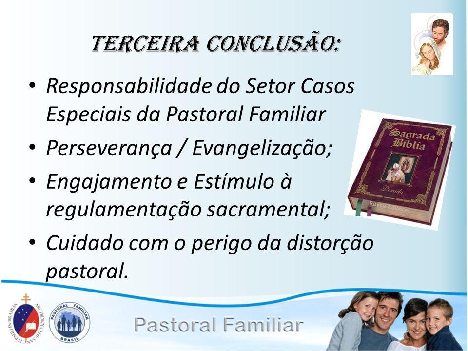 Terceira conclusão: Responsabilidade do Setor Casos Especiais da Pastoral Familiar. Perseverança / Evangelização;