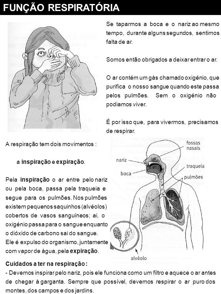 FUNÇÃO RESPIRATÓRIA Se taparmos a boca e o nariz ao mesmo
