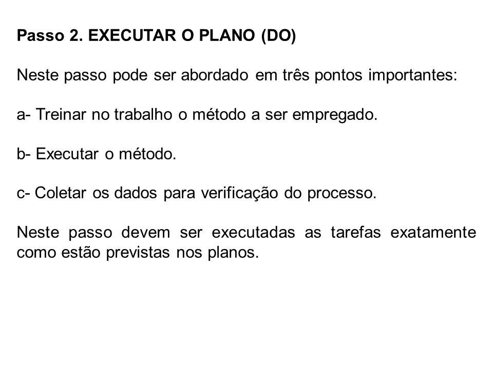 Passo 2. EXECUTAR O PLANO (DO)