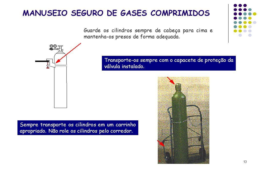MANUSEIO SEGURO DE GASES COMPRIMIDOS