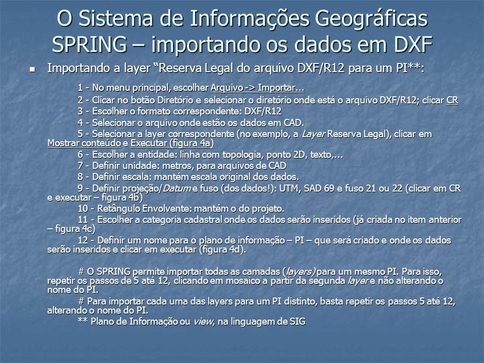 O Sistema de Informações Geográficas SPRING – importando os dados em DXF