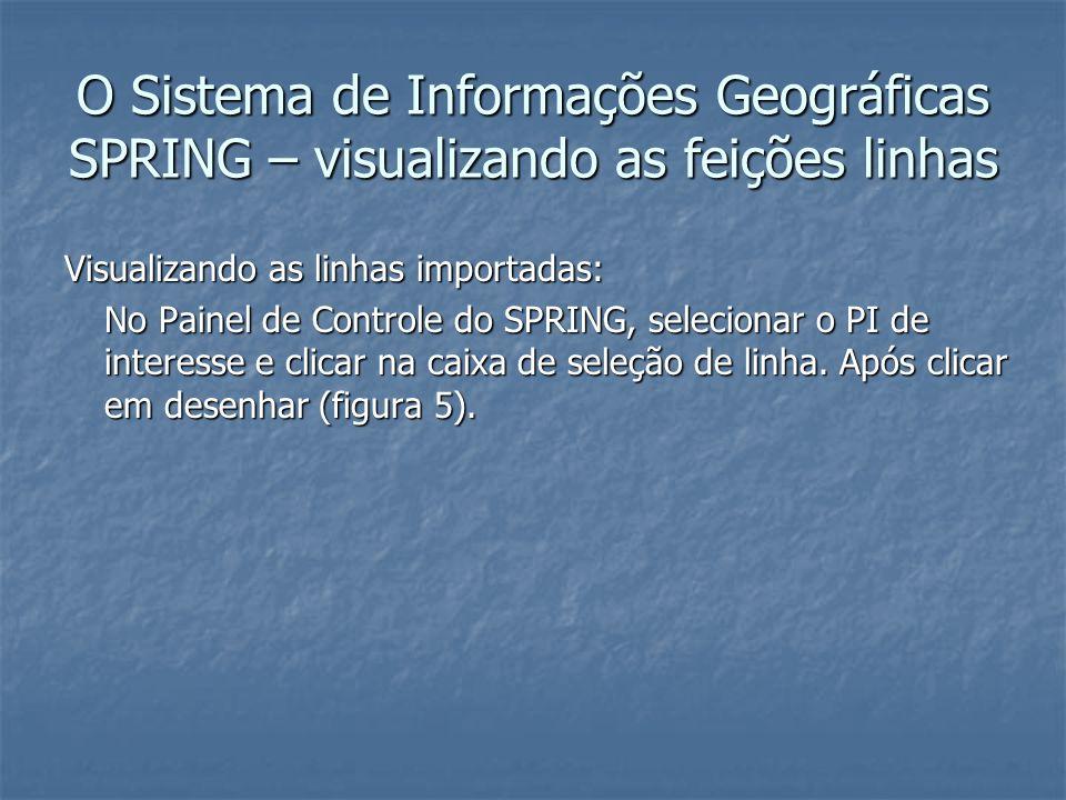 O Sistema de Informações Geográficas SPRING – visualizando as feições linhas