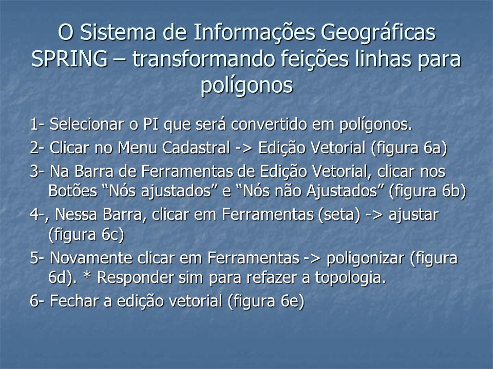 O Sistema de Informações Geográficas SPRING – transformando feições linhas para polígonos