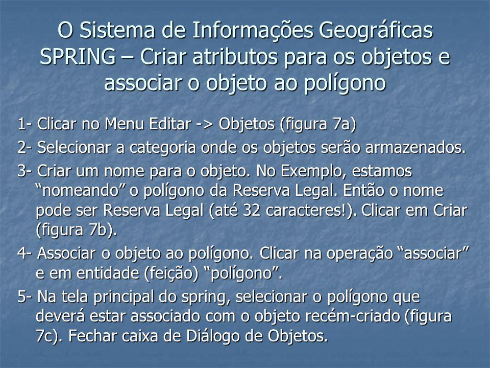 O Sistema de Informações Geográficas SPRING – Criar atributos para os objetos e associar o objeto ao polígono
