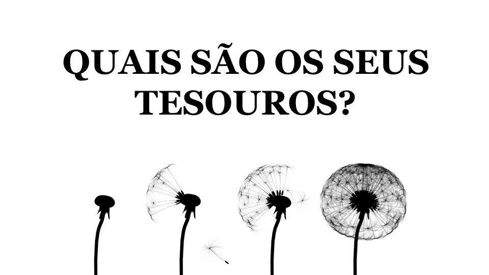 QUAIS SÃO OS SEUS TESOUROS