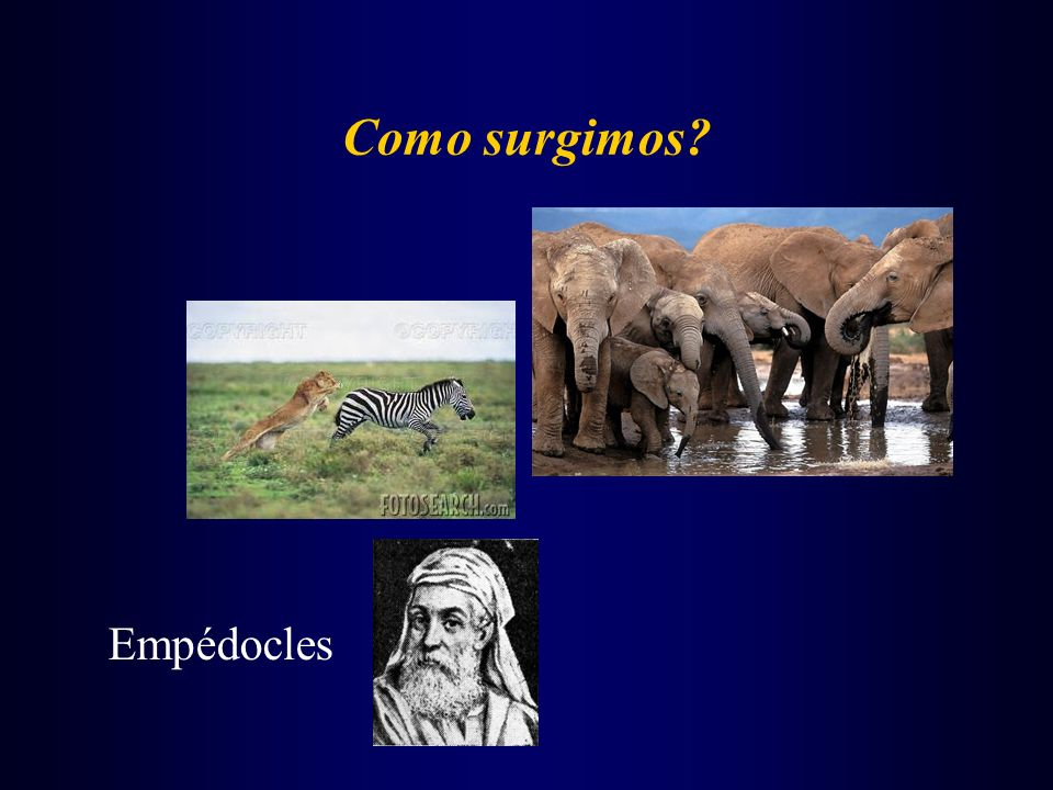 Como surgimos Empédocles