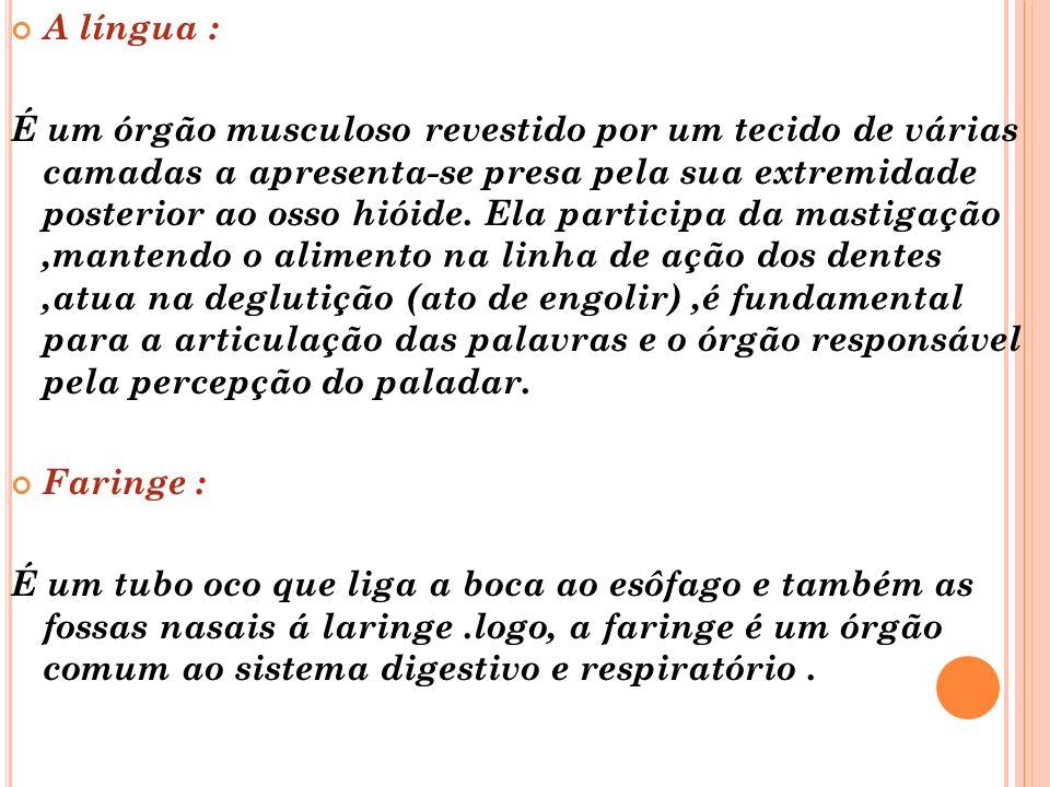 A língua :