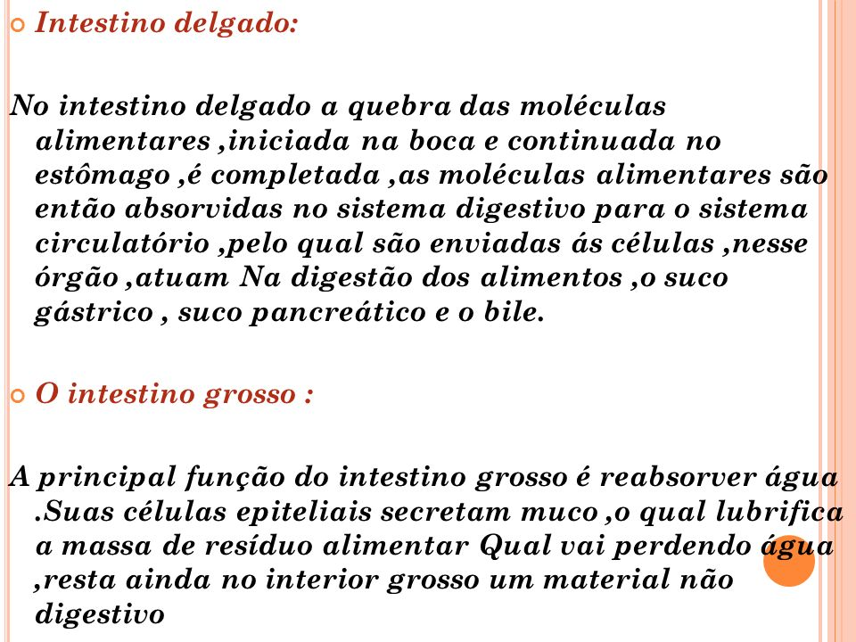 Intestino delgado: