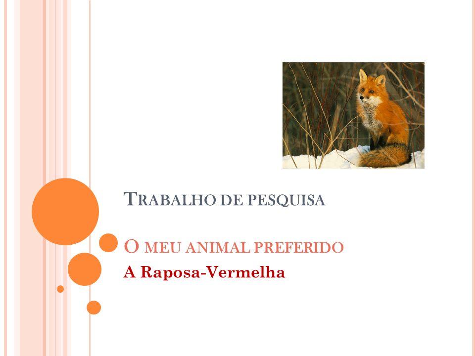 Trabalho de pesquisa O meu animal preferido