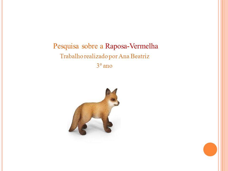 Pesquisa sobre a Raposa-Vermelha