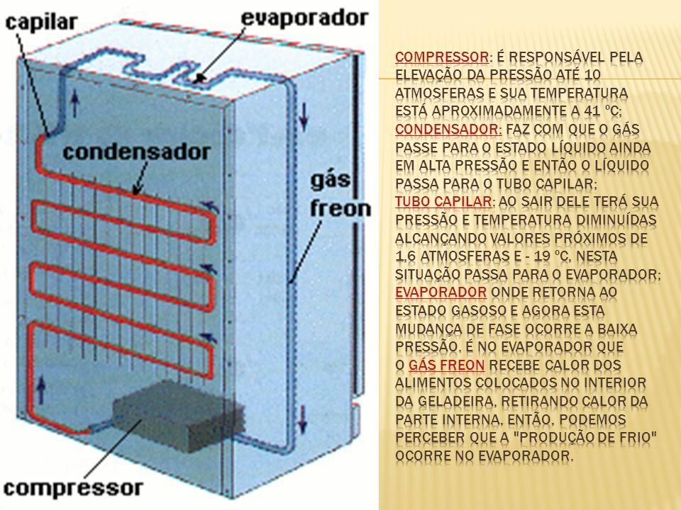 compressor: é responsável pela elevação da pressão até 10 atmosferas e sua temperatura está aproximadamente a 41 ºC; condensador: faz com que o gás passe para o estado líquido ainda em alta pressão e então o líquido passa para o tubo capilar; tubo capilar: ao sair dele terá sua pressão e temperatura diminuídas alcançando valores próximos de 1,6 atmosferas e - 19 ºC, nesta situação passa para o evaporador; evaporador onde retorna ao estado gasoso e agora esta mudança de fase ocorre a baixa pressão.