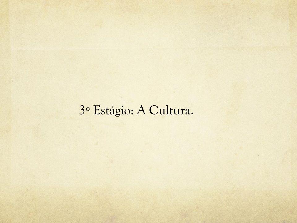 3º Estágio: A Cultura.