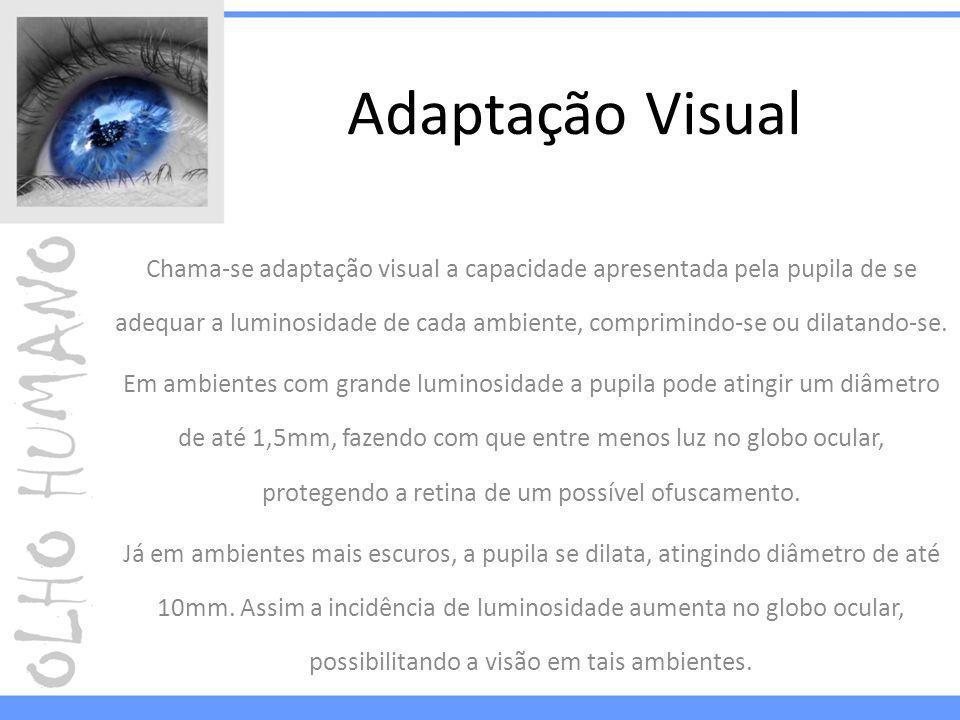 Adaptação Visual