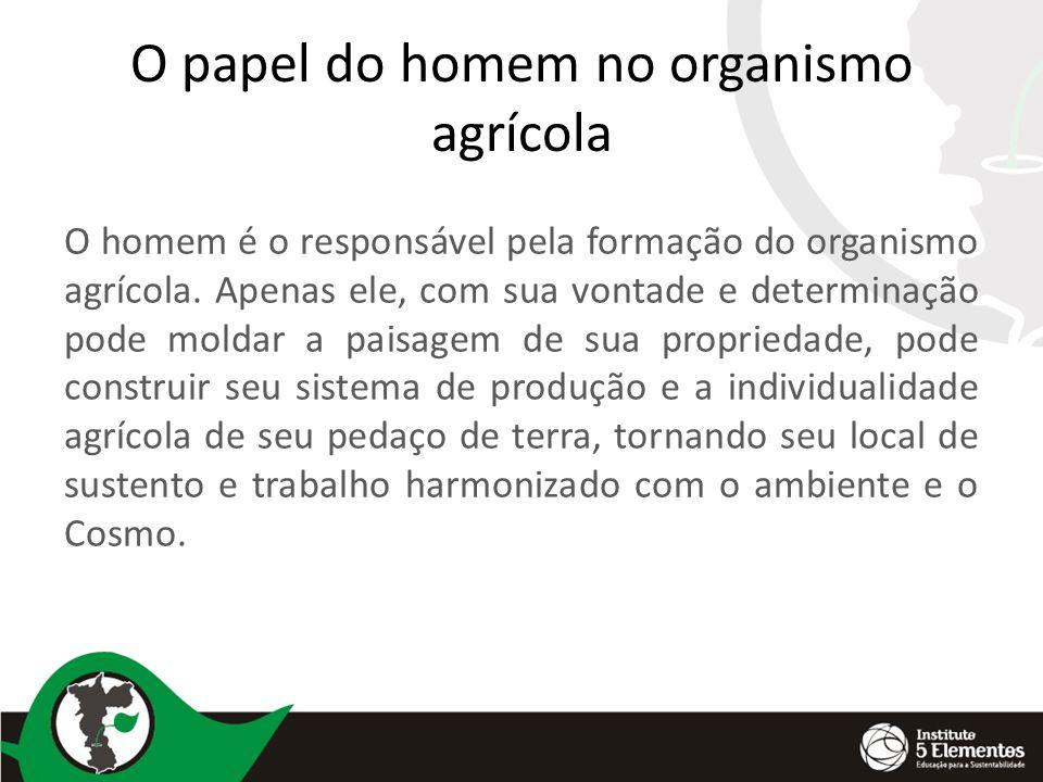 O papel do homem no organismo agrícola