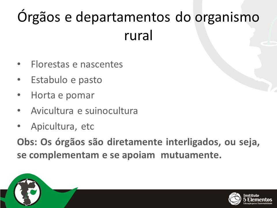 Órgãos e departamentos do organismo rural