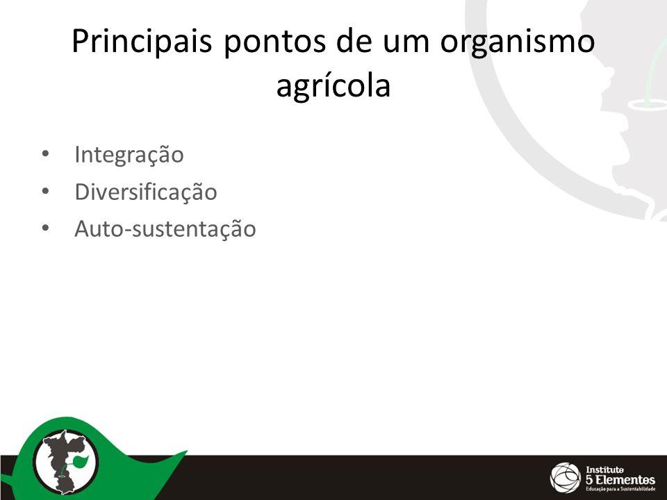 Principais pontos de um organismo agrícola