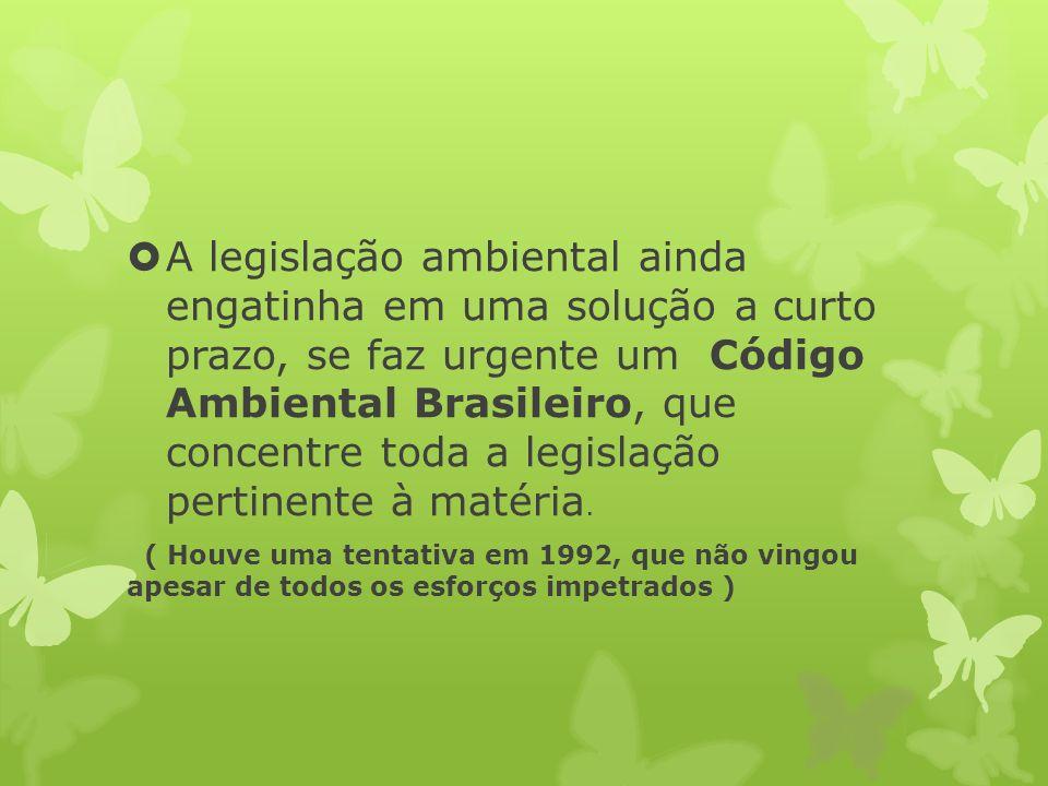 A legislação ambiental ainda engatinha em uma solução a curto prazo, se faz urgente um Código Ambiental Brasileiro, que concentre toda a legislação pertinente à matéria.
