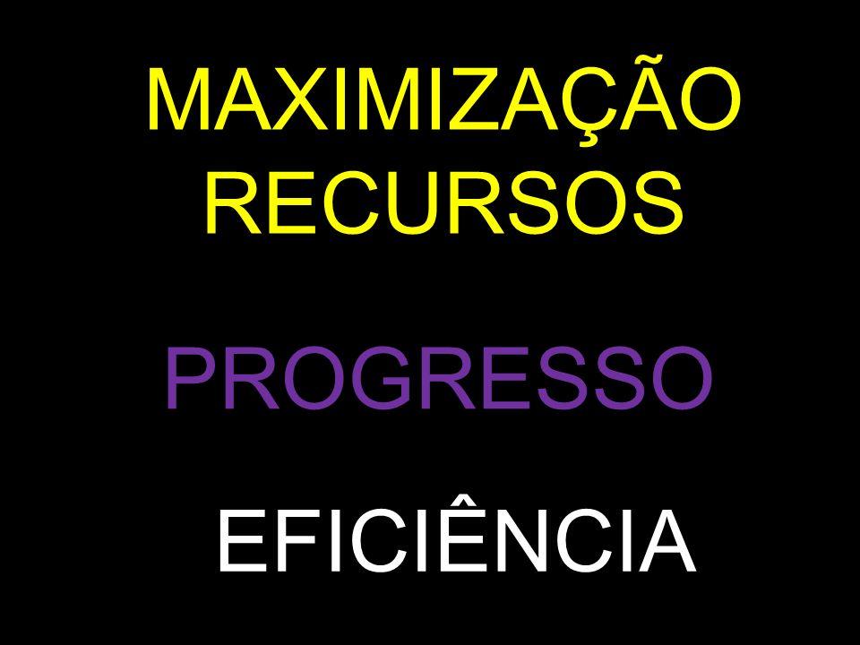 MAXIMIZAÇÃO RECURSOS PROGRESSO EFICIÊNCIA