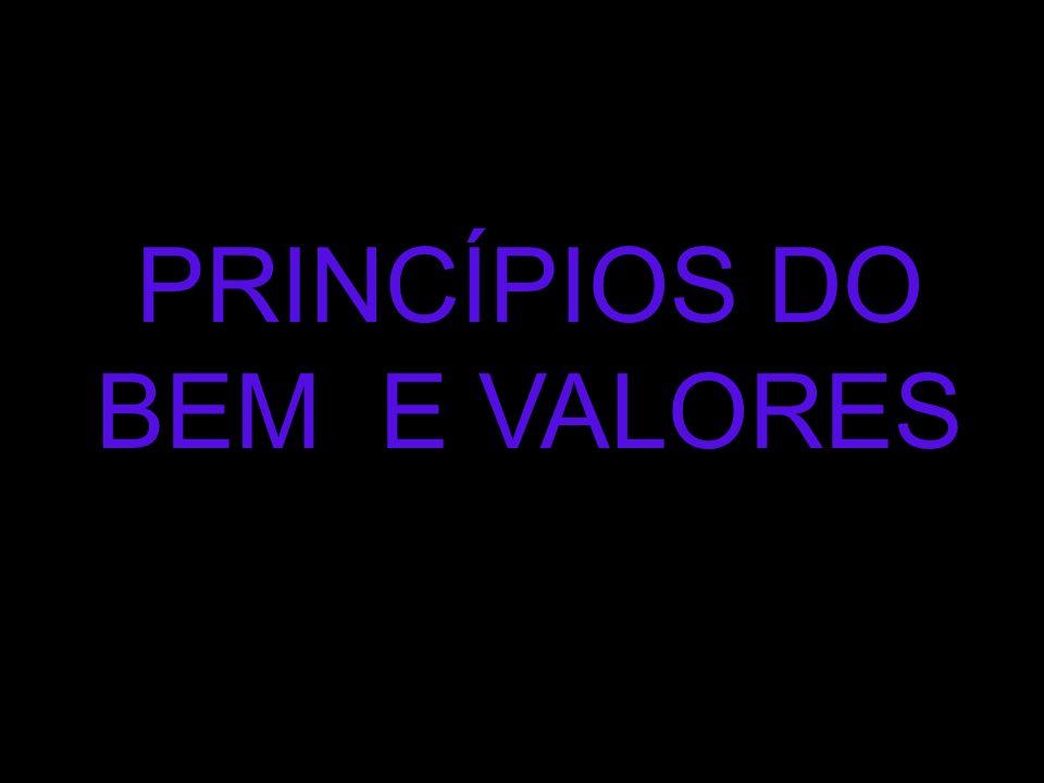 PRINCÍPIOS DO BEM E VALORES