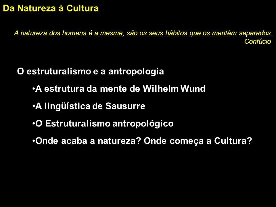 O estruturalismo e a antropologia