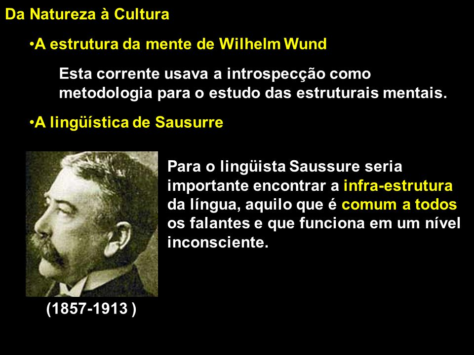 Da Natureza à Cultura A estrutura da mente de Wilhelm Wund.
