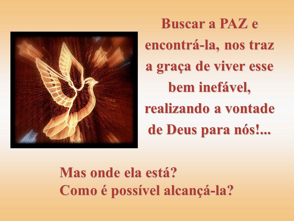 Buscar a PAZ e encontrá-la, nos traz a graça de viver esse bem inefável, realizando a vontade de Deus para nós!...