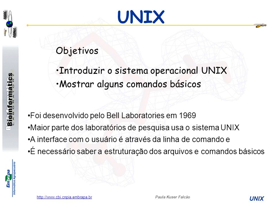 UNIX Objetivos Introduzir o sistema operacional UNIX