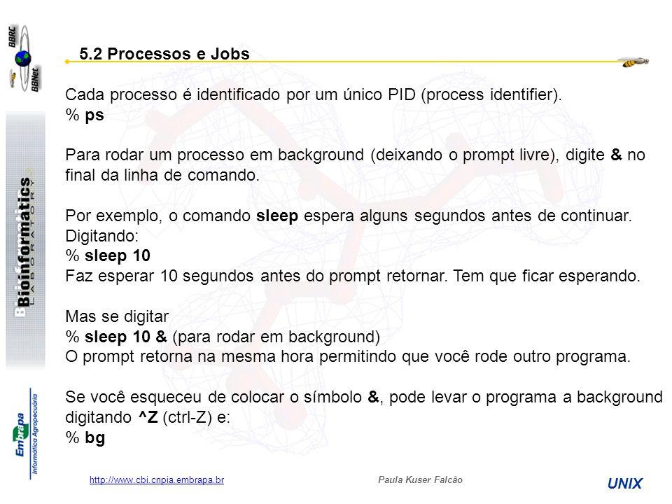 Cada processo é identificado por um único PID (process identifier).