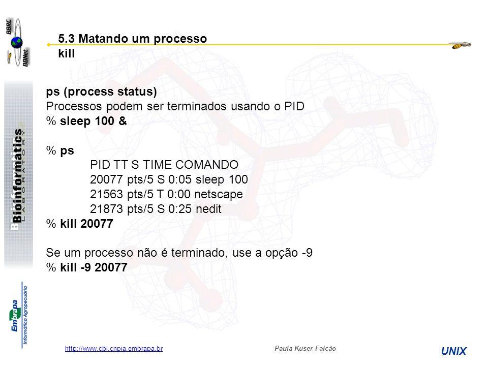 Processos podem ser terminados usando o PID % sleep 100 & % ps