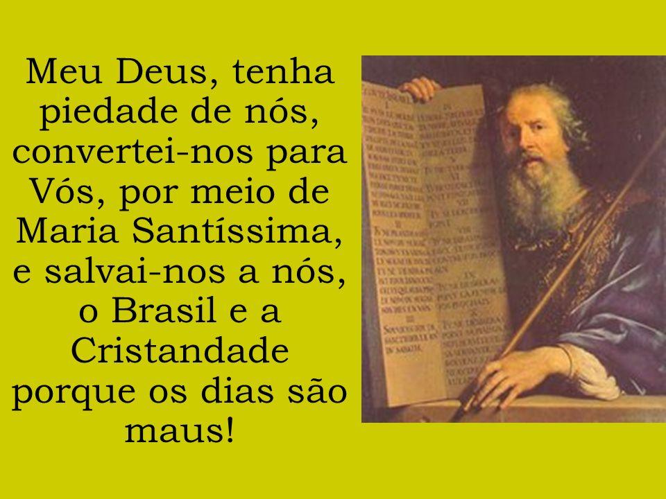 Meu Deus, tenha piedade de nós, convertei-nos para Vós, por meio de Maria Santíssima, e salvai-nos a nós, o Brasil e a Cristandade porque os dias são maus!