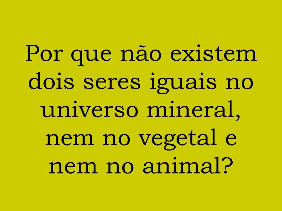Por que não existem dois seres iguais no universo mineral, nem no vegetal e nem no animal