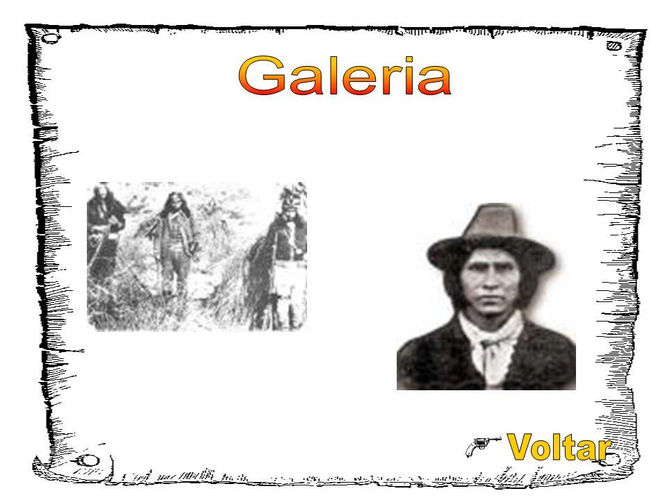 Galeria Voltar