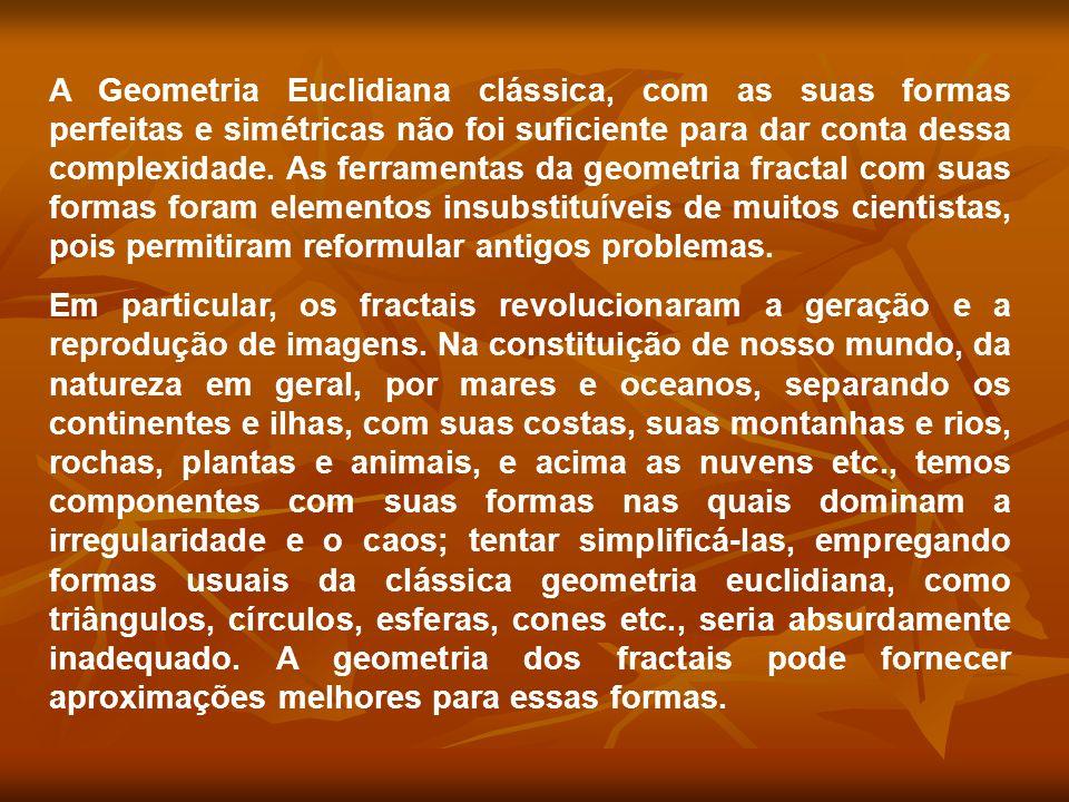 A Geometria Euclidiana clássica, com as suas formas perfeitas e simétricas não foi suficiente para dar conta dessa complexidade. As ferramentas da geometria fractal com suas formas foram elementos insubstituíveis de muitos cientistas, pois permitiram reformular antigos problemas.