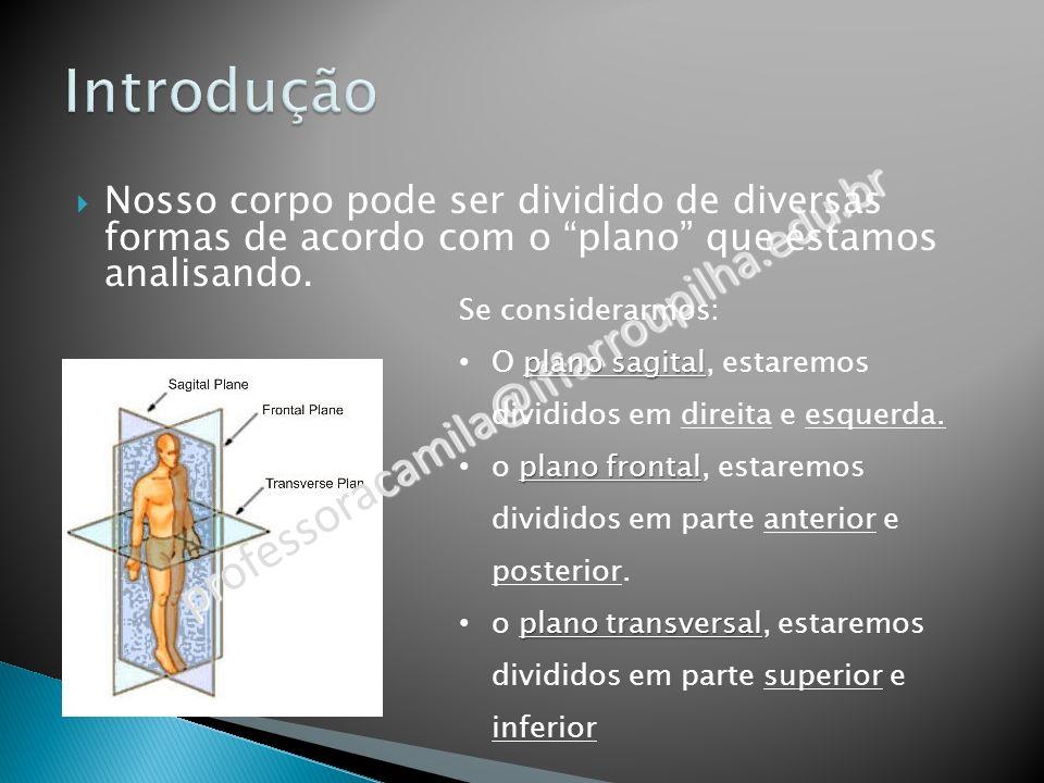 Introdução professoracamila@iffarroupilha.edu.br
