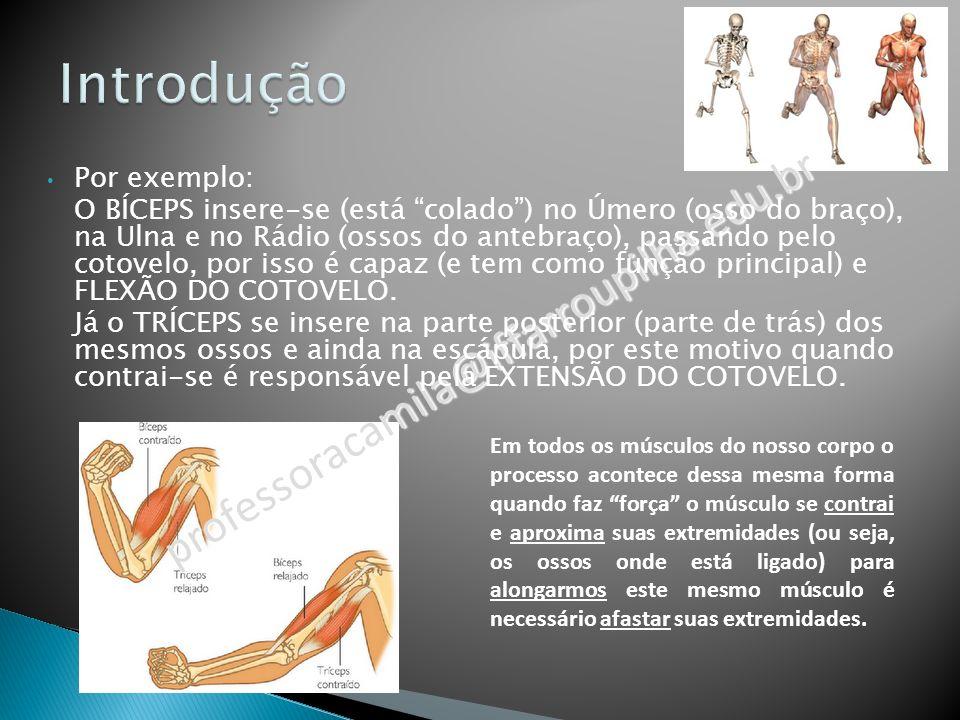 Introdução professoracamila@iffarroupilha.edu.br Por exemplo:
