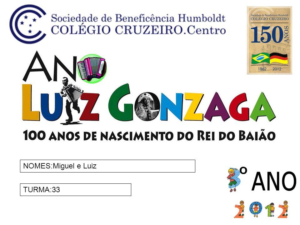 NOMES:Miguel e Luiz ANO º TURMA:33