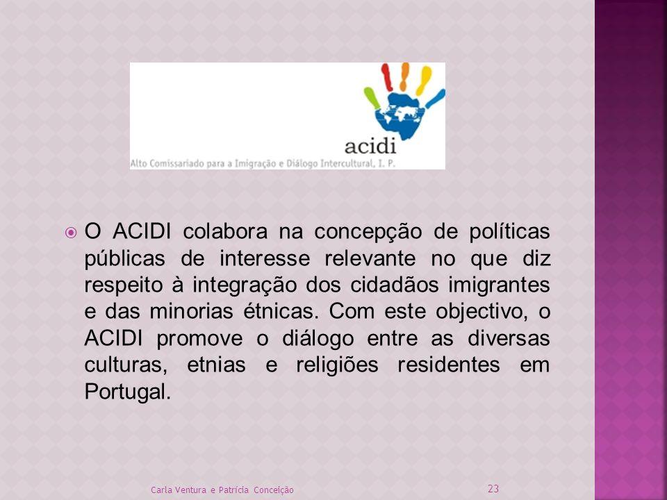 O ACIDI colabora na concepção de políticas públicas de interesse relevante no que diz respeito à integração dos cidadãos imigrantes e das minorias étnicas. Com este objectivo, o ACIDI promove o diálogo entre as diversas culturas, etnias e religiões residentes em Portugal.