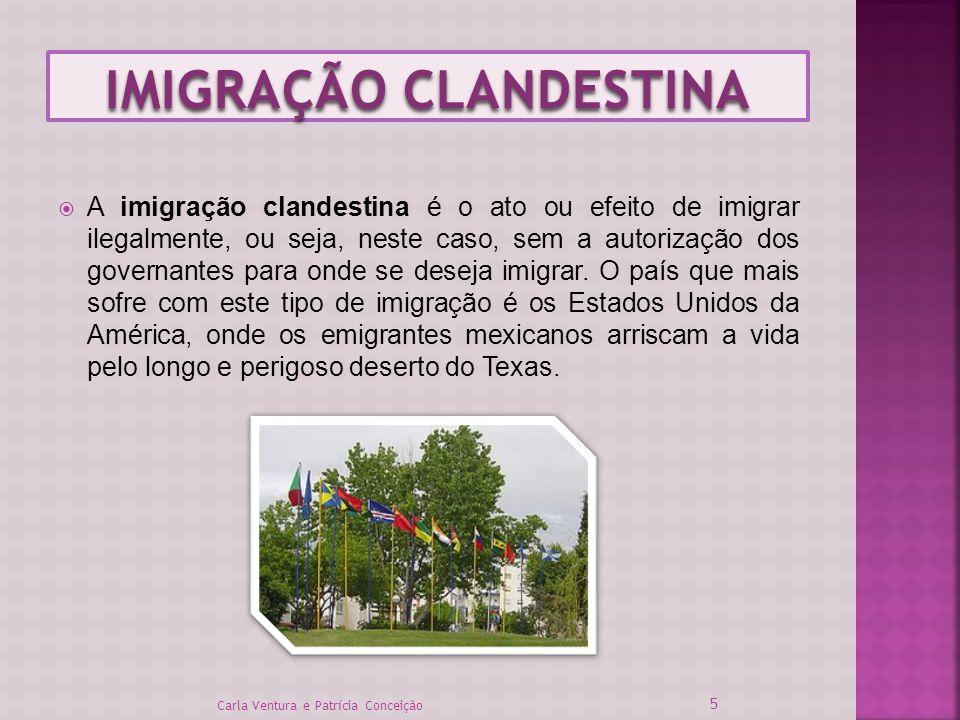 IMIGRAÇÃO CLANDESTINA